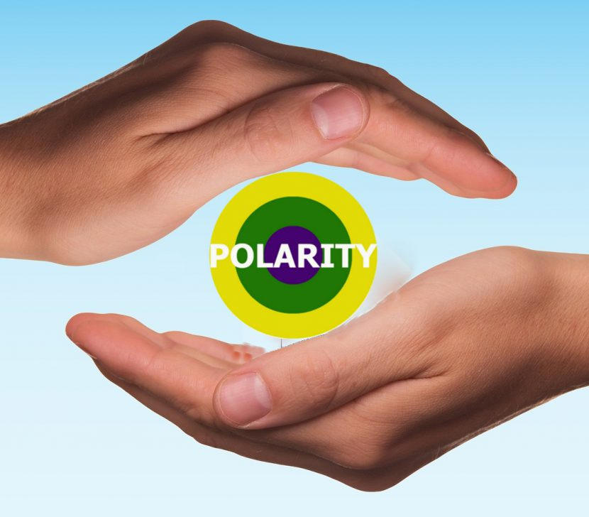Polarity - Der Weg der Selbstheilung